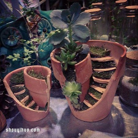 打破的花盆变废为宝 DIY童话般美丽的盆景 -  www.shenghuoping.com
