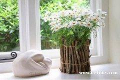 简单田园风光创意花瓶的做法图解