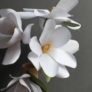 <b>白玉兰花语 DIY漂亮的白玉兰花纸艺花制作教程</b>