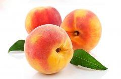 桃子上面的毛毛巧清除
