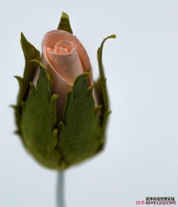 DIY海绵纸玫瑰花苞手工制作教程图解 282 600x698