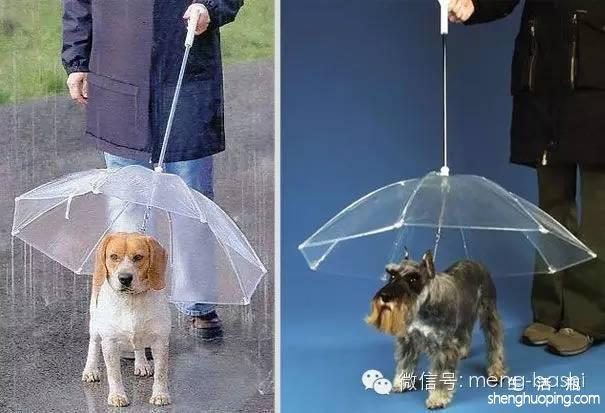 不锈钢雨伞架