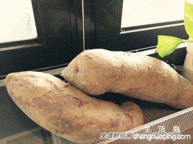 根茎类食材的保存方法