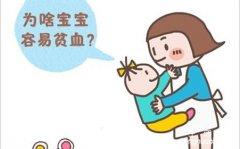 小儿缺铁性贫血的表现与预防