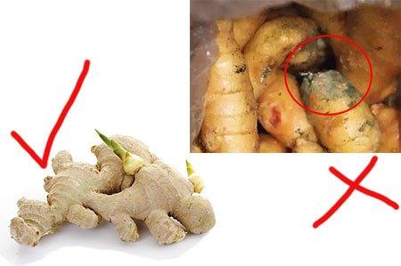 <b>生姜保存方法不当导致生姜发芽能吃吗?</b>
