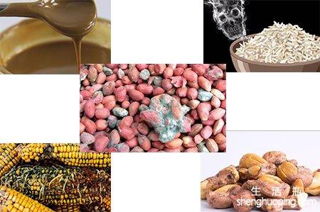 黄曲霉素主要存在于什么食物中