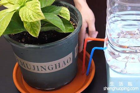 制作自动给水器科技小制作图解